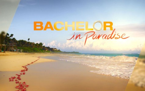 Review: Bachelor in Paradise channels exciting drama, renewed for second season