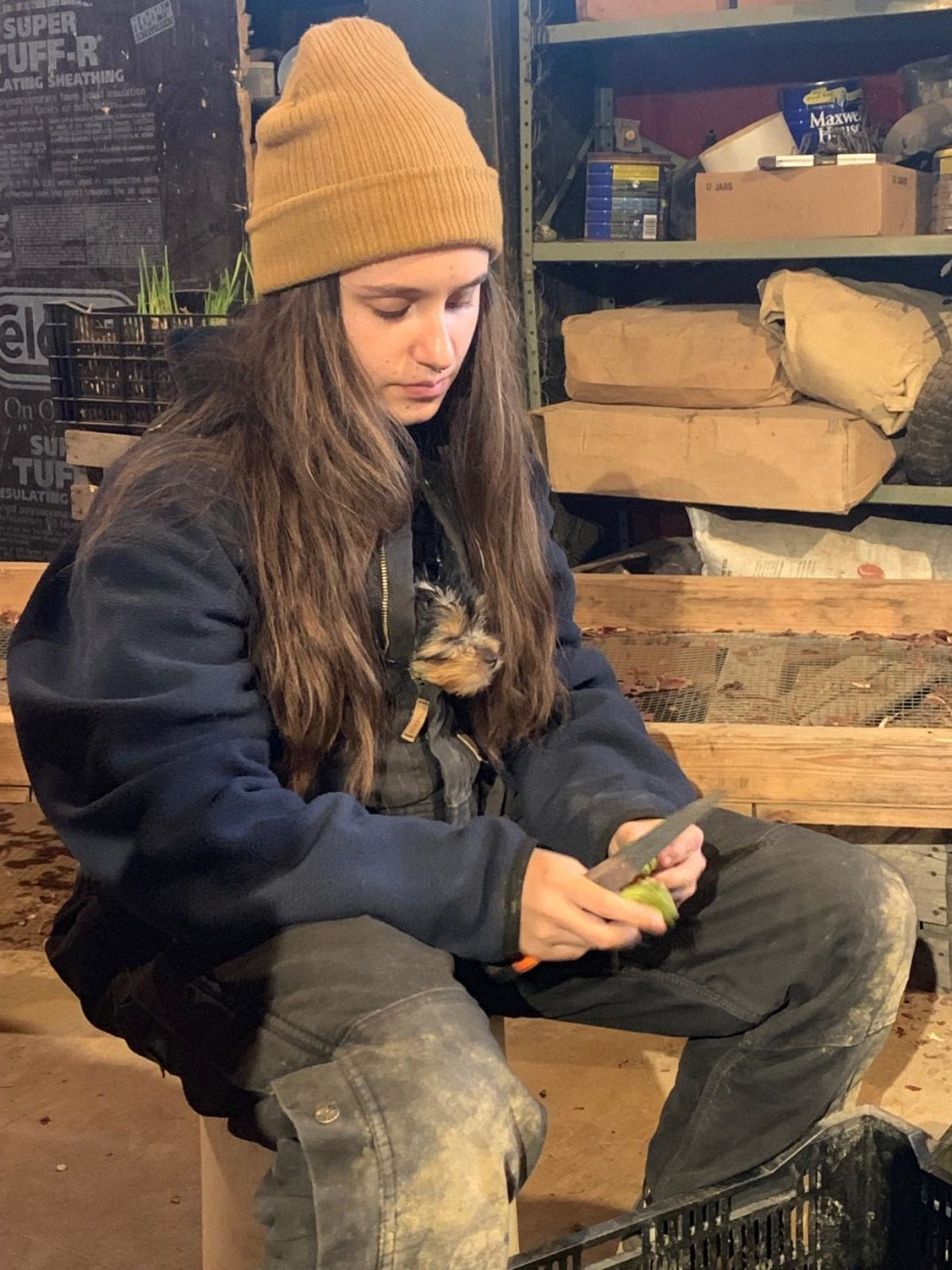 LIFE BEYOND HIGH SCHOOL: Early graduate Mary Kate Mathy cleans brussel sprouts during her full-time job working on a farm in Michigan.