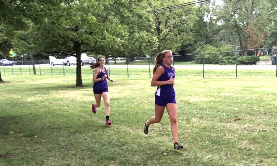 BRANCHING OUT: Volleyball player Violet Mitchell (left) runs in her second cross country meet on Friday.