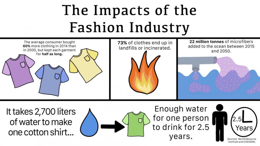 INEFFICIENT: This infographic demonstrates the different ways that fast fashion is environmentally unsustainable.