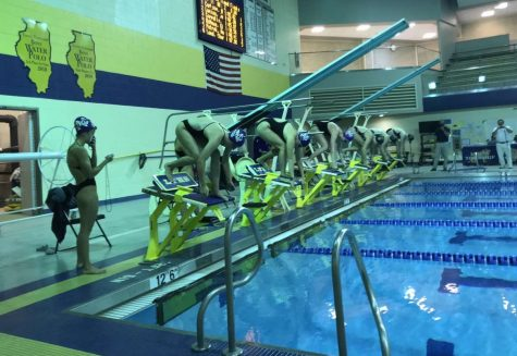 ON YOUR MARKS, GET SET, GO: DGN and LT swimmers prepare to race at a Sept. 10 meet.