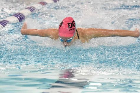 SWIMMING WITH STYLE: Freshman swimmer Gianna Cappello did it all at sectionals this year