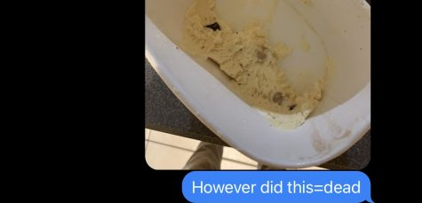 BROTHERLY LOVE: Blinded by rage, spell check got the best of me here. Regardless, everyone has experienced this feeling of helplessness: opening the ice cream and seeing this sad excuse for a dessert. It has happened far too many times in the last two months to me. For legal reasons, this text was a joke.