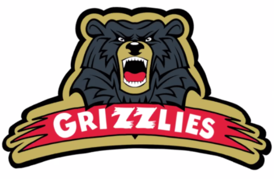 Meet the Burlington West Grizzlies: A team for DGN female hockey players