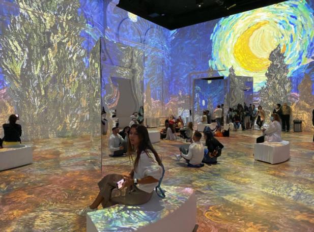 STARGAZING: Junior Veronica LaSota takes in Van Gogh's art.